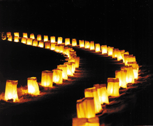 Rows of Luminaria